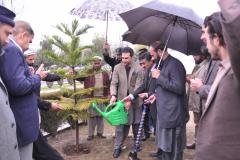 Tree plantation by Commissioner Hazara Division Mr Amjad Ali Khan 14 February 2019