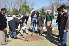 Tree Plantation Campaign Dr. Maroof Shah and Director CIIT Abbottabad March 08, 2016