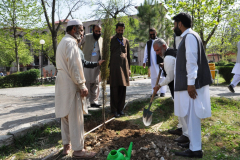 Tree Plantation Drive by Green Campus Committee March 31, 2017